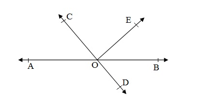 Ncert 9th Math Chapter 6 Lines and Angles Exercise 6.1 Question 1