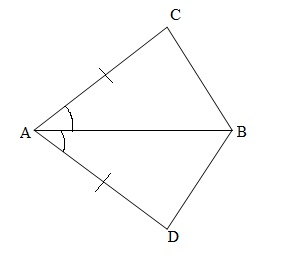 Ncert 9th Math Chapter 7 Triangles Exercise 7.1 Question 1
