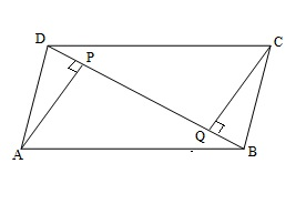 Ncert 9th Math Chapter 8 Quadrilaterals Exercise 8.1 Question 10